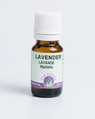 LAVENDER MAILLETTE FRANCE (Lavandula angustifolia) Organic