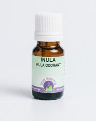 INULA (Inula graveolens) Organic