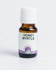 HONEY MYRTLE (Melaleuca teretifolia)