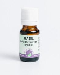 BASIL CT METHYL CHAVICOL (Ocimum basilicum) Organic