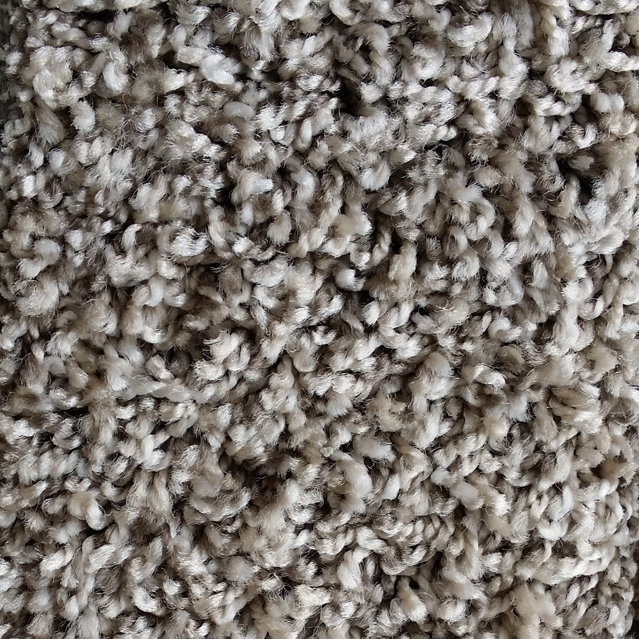 Phenix Carpeting Carpet Vidalondon