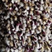 Phenix Carpet N161 Creekside 1019 Harvest Spray