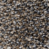 Phenix Carpet N216 Touchstone 11 Rough Cut