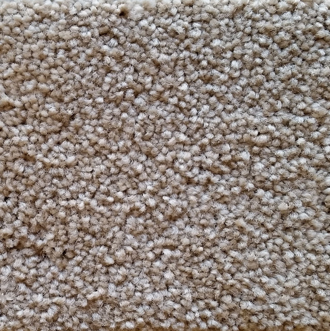Buy Now  Southwind Carpet Inspiration 1232a7762c