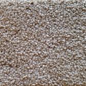 Southwind Carpet Inspiration 2502 Oak