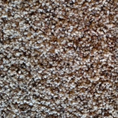 Southwind Carpet Timeless Beauty 2005 Pecan Spice