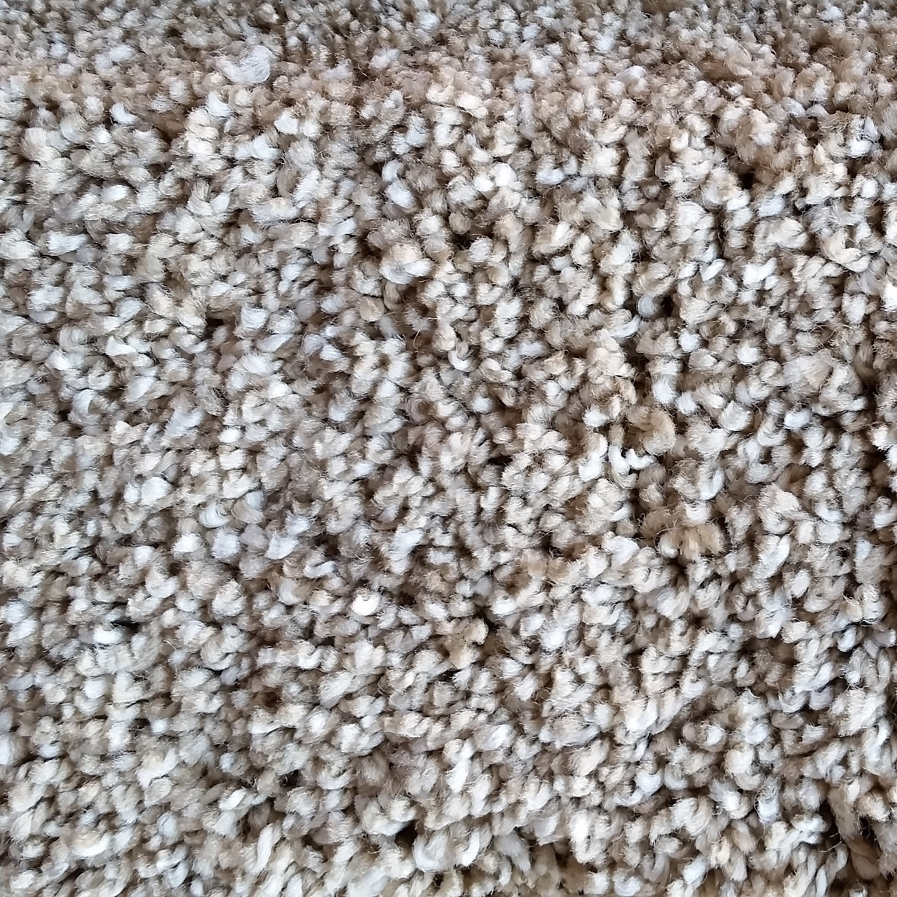 Dreamweaver Carpet Iron Frost Review Home Co
