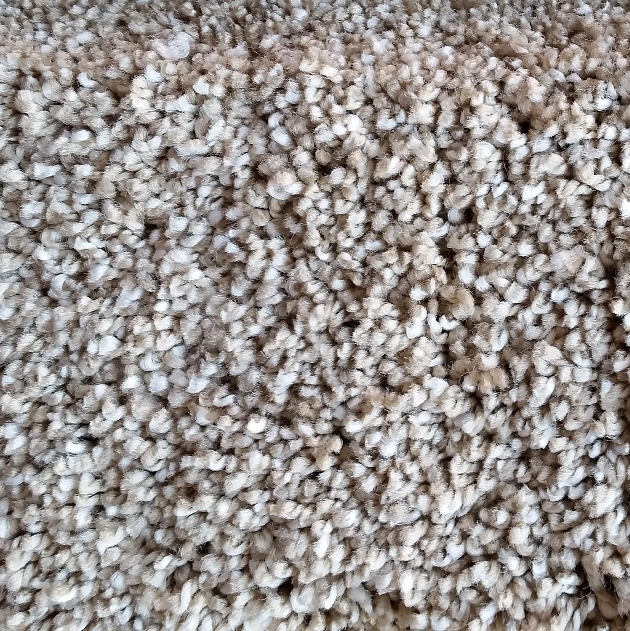 Buy Now Dream Weaver Carpet Glorious 6550