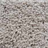 Shaw Carpet E0473 Expect More (S) 110
