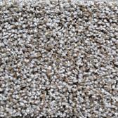 Shaw Carpet E0570 Expect More (T) 531