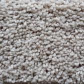 Shaw Carpet E0571 Go Big 100