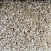 Shaw Carpet E0811 Parlay 102 Muslin