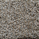 Shaw Carpet: E0820 Make It Yours (T) 120