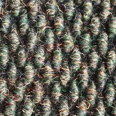 MainStreet By Philadelphia Shaw Turf Succession II Broadloom 54694 Crushed Olive 00300