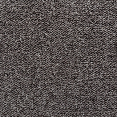 Pentz Modular Commercial Carpet tile Essentials 7029T 1939 Take Charge