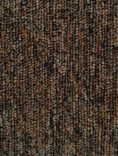 Pentz Modular Commercial Carpet tile Fast Break 7060T 2147 Coast to Coast