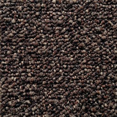 Pentz Commercial Modular Carpet Tile Diversified  7037T 2050 Bizarre