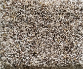 Dream Weaver Carpet World Class II 5510  768 Bisque