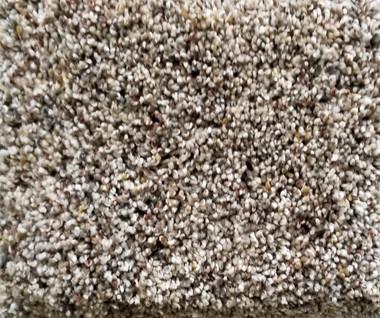 Dream Weaver Carpet World Class II 5510  768 Bisque