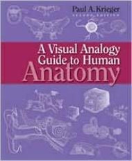 Visual Analogy Guide To Human Anatomy