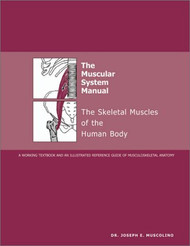 Muscular System Manual
