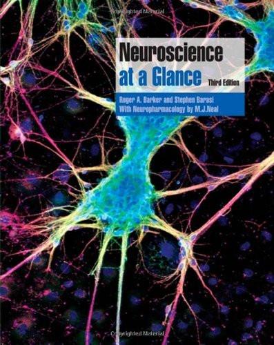 Neuroscience At A Glance