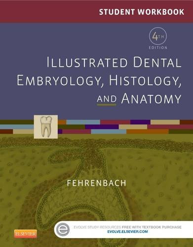 Student Workbook For Illustrated Dental Embryology Histology And Anatomy