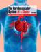 Cardiovascular System At A Glance