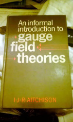 Informal Introduction To Gauge Field Theories
