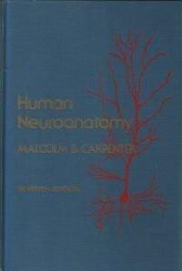 Human Neuroanatomy