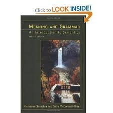 Meaning and Grammar