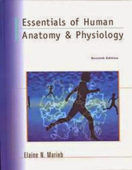 Essentials Of Human Anatomy And Physiology - Elaine Nicpon Marieb