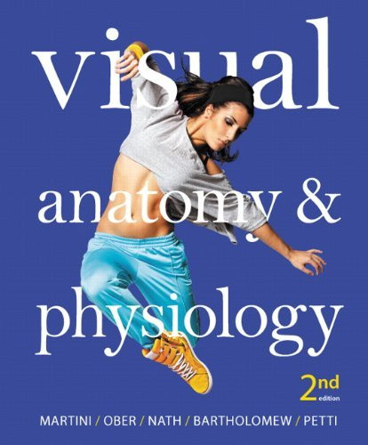 Visual Anatomy And Physiology