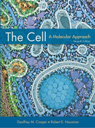 Cell A Molecular Approach