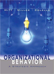 Organizational Behavior A Strategic Approach
