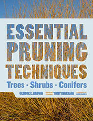 Essential Pruning Techniques