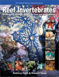 Reef Invertebrates