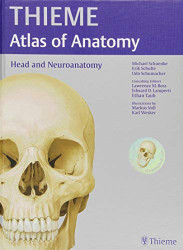 Head Neck and Neuroanatomy