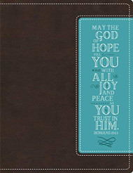 NIV Beautiful Word Bible Imitation Leather Brown/Blue
