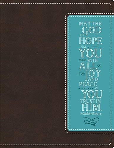 NIV Beautiful Word Bible Imitation Leather Brown/Blue