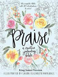Praise A Creative Journaling Bible