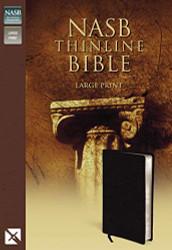Nasb Thinline Bible Large Print