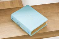 Jesus Bible NIV Edition Leathersoft Blue