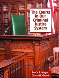 Courts In Our Criminal Justice System