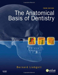 Anatomical Basis Of Dentistry