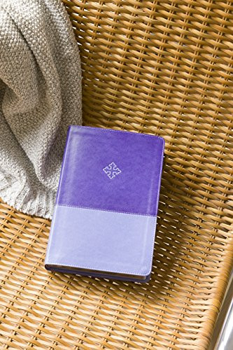 Amplified Study Bible Leathersoft Purple Indexed