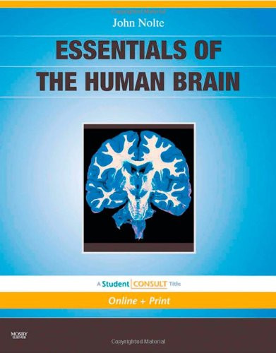Essentials of the Human Brain