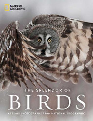Splendor of Birds