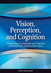 Vision Perception and Cognition