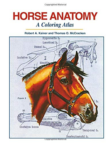 Horse Anatomy A Coloring Atlas